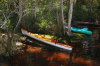 Beached kayaks